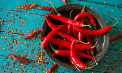 A bowl holding red chilli peppers