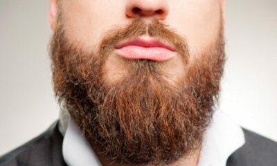 Bottom of a man's face with full beard