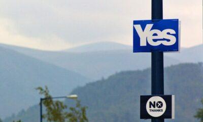 Scottish IndyRef YES No signs